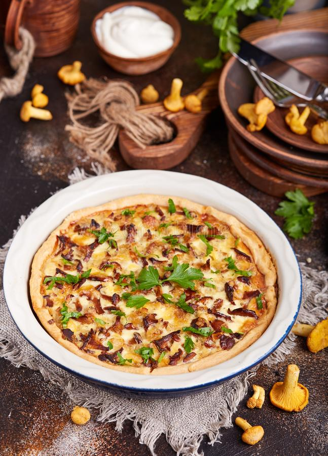 Quiche open tart pie with chicken meat, chanterelles mushrooms, onion and cheese. Quiche delicious homemade open tart pie with chicken meat, chanterelles stock images