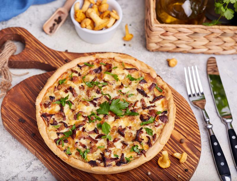 Quiche – open tart pie with chicken meat, chanterelles mushrooms, onion and cheese. Quiche - delicious homemade open tart pie with chicken meat royalty free stock photo