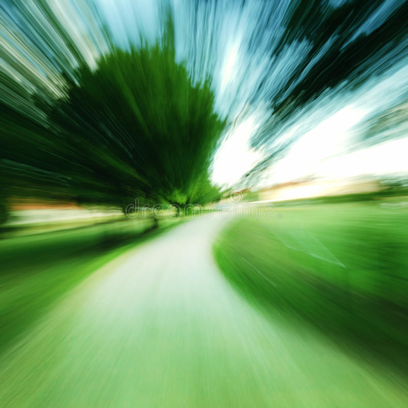 Download Quick Movement Zoom In Forest Stock Photo - Image: 22144540