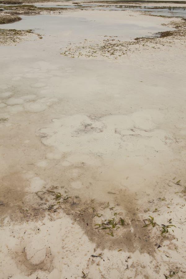 Quicksand w oceanie indyjskim zdjęcie stock