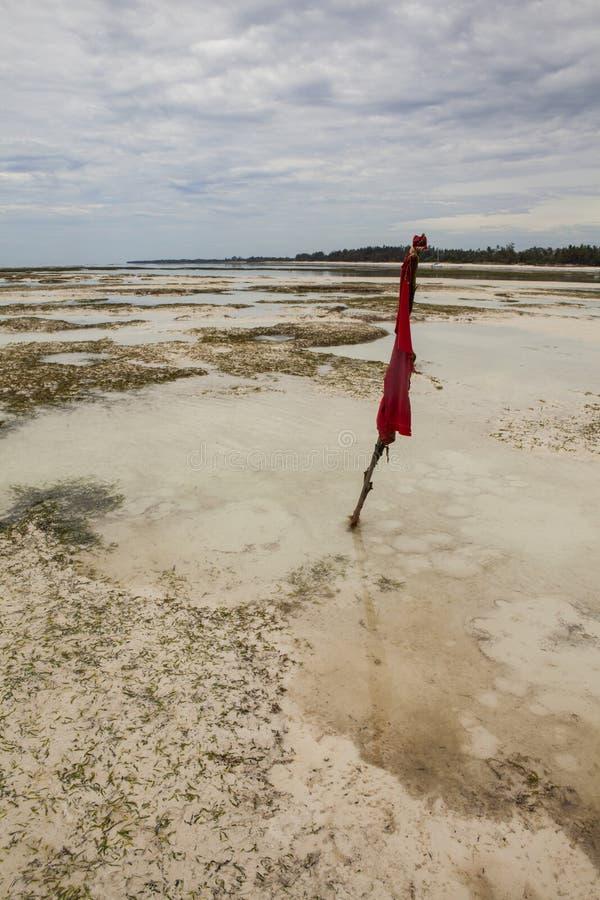 Quicksand w oceanie indyjskim zdjęcia stock