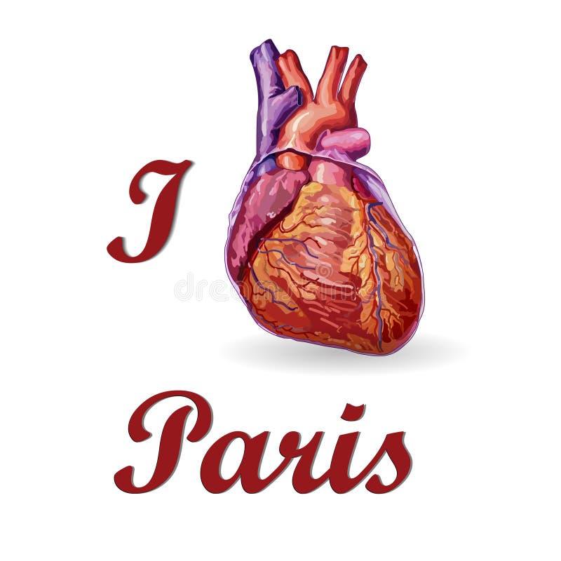 Quiero París Corazón humano ilustración del vector