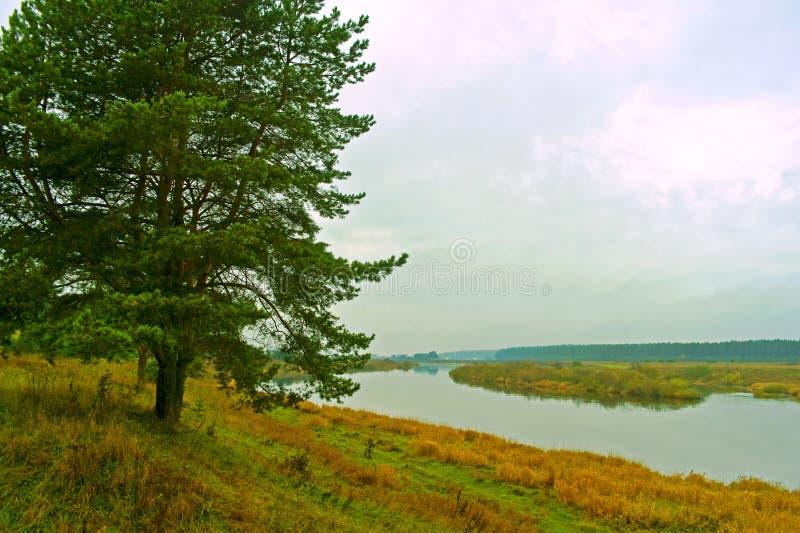 Quiet autumn morning on the river Tvertsa