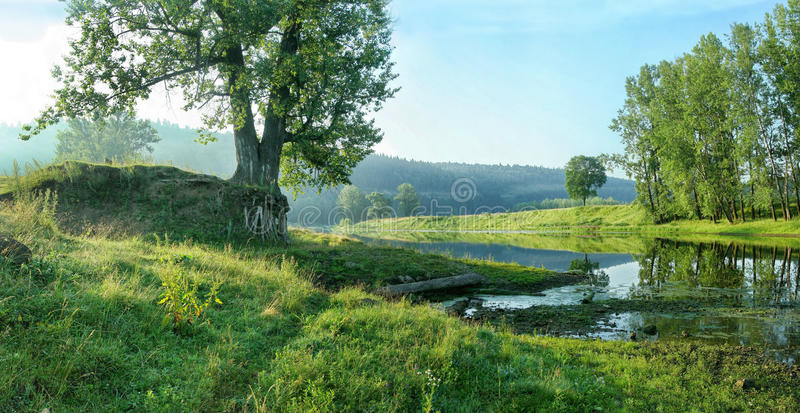 Quiet backwater of river on the background of forest slope. stock image