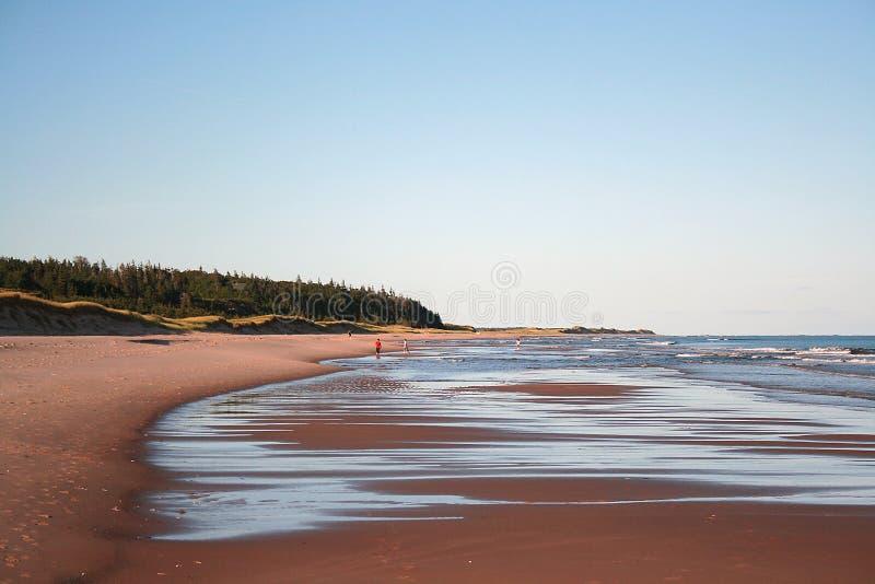 Download Quiet Beach stock image. Image of waves, ocean, atlantic - 11113227