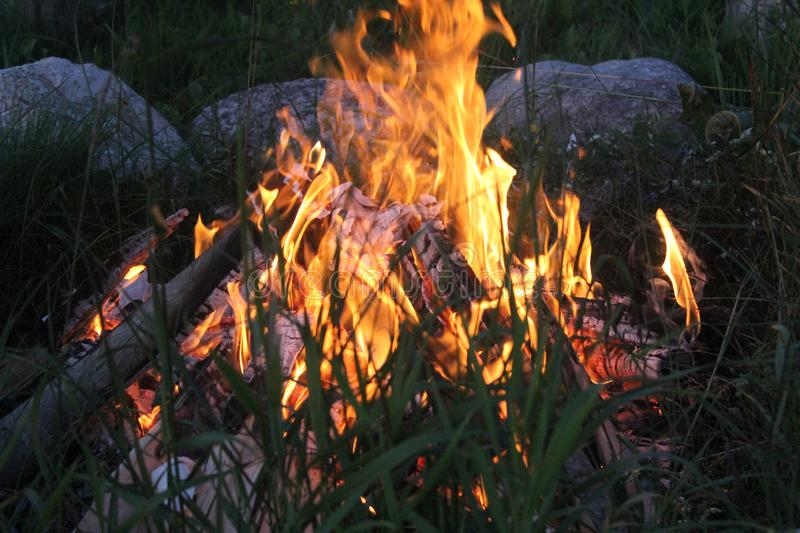 Quiet campfire at warm summer day. royalty free stock image
