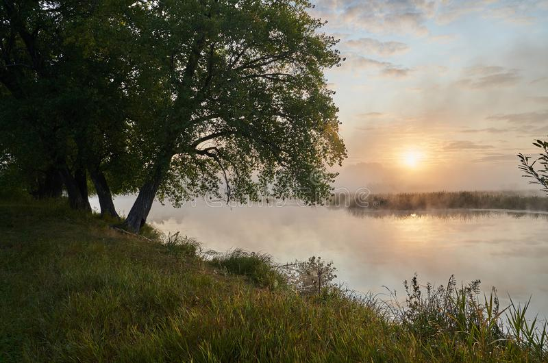 A quiet dawn over the lake in a Sunny hazy light. royalty free stock photo