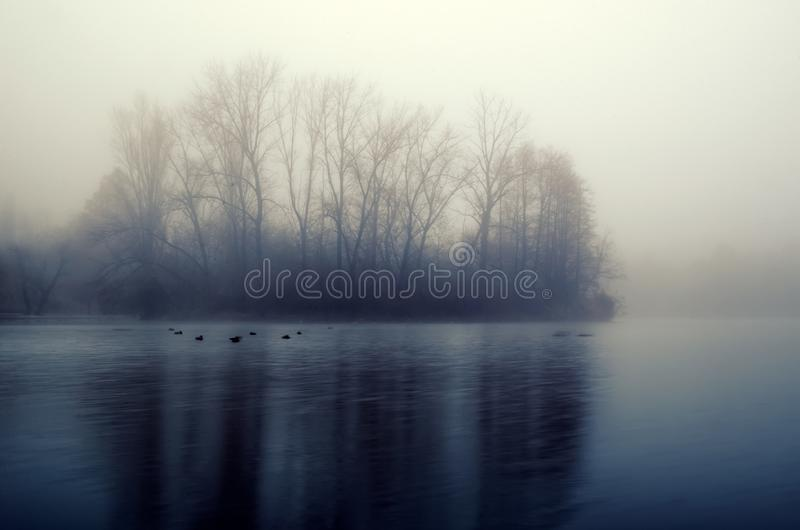 Quiet lake before dawn in the mist. Trees and lake, perfect for meditation. Mysterious and foggy night with tree silhouettes. Reflected in the water royalty free stock photo