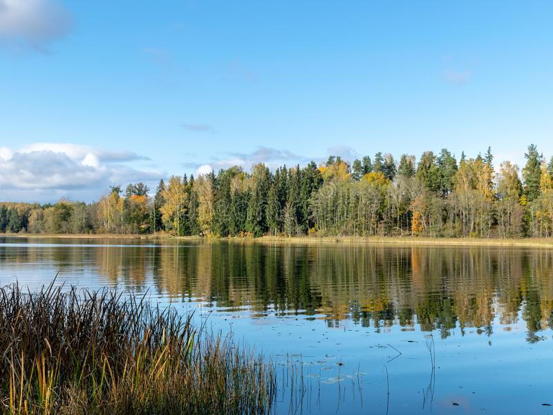 Quiet landscape with autumn trees on the water`s edge, beautiful reflections royalty free stock photography