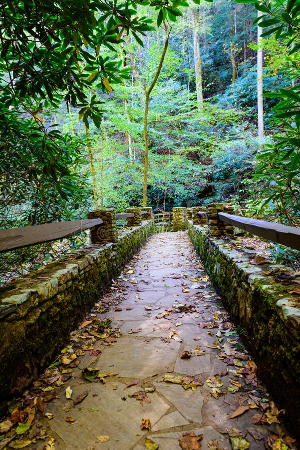 Quiet Path through the woods in the mountains of the Carolinas. Man-made path in the mountains of North Carolina by Pearson waterfalls stock images