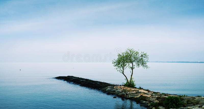 Quiet and peaceful lake royalty free stock photo