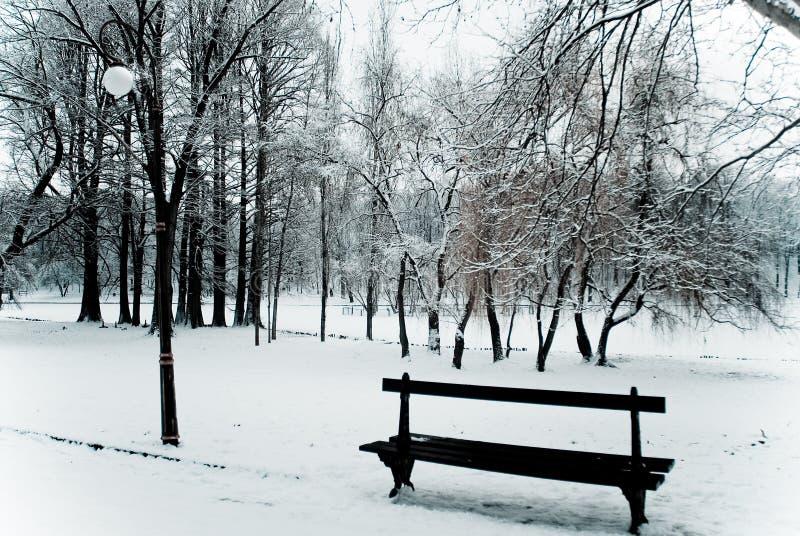 Download Quiet place stock image. Image of park, season, mist - 17738391