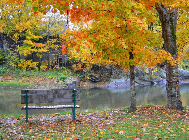 Vermont Fall Foliage 1 stock image