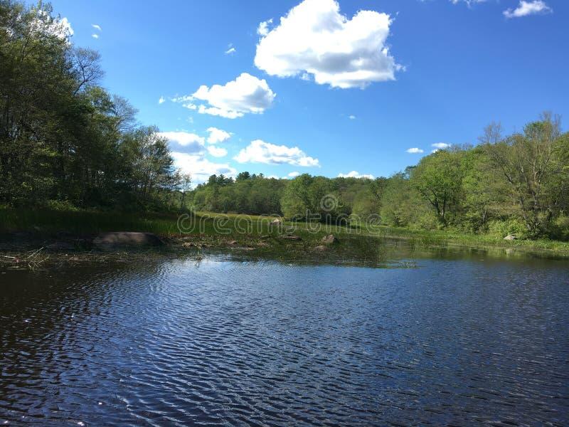 Quiet Pond stock photography