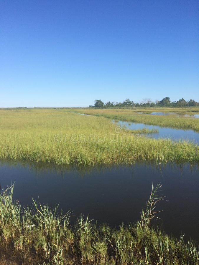 Toms River, New Jersey summer floodplains with runoff from recent rains. Quiet, restful moors of water in Toms River, New Jersey at full tide in the summertime royalty free stock photos