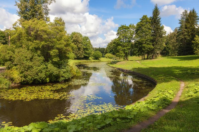Quiet river with water lilies in the palace park, Pavlovsk, St. Petersburg region, Russia. Quiet river with water lilies among a green park on a sunny day stock photo