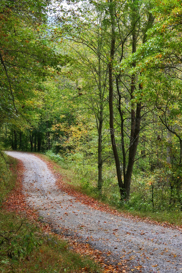 The Quiet Road. Road in the Mountains during Late Summer stock photo