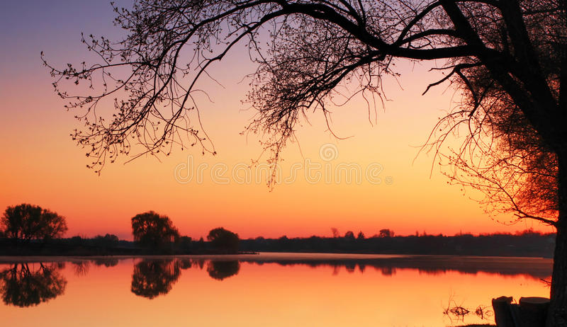 Download Quiet spring sunrise stock photo. Image of gold, daylight - 19741652