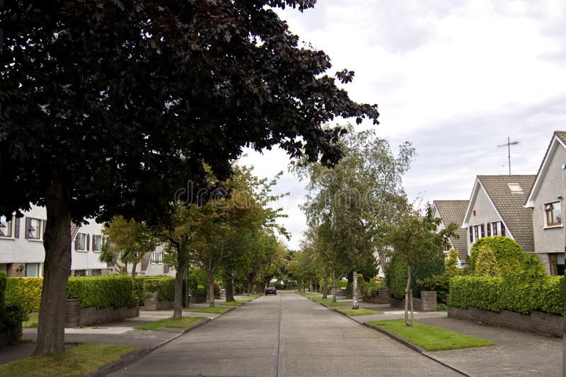 Download Quiet suburban street stock photo. Image of ordinary - 10617834