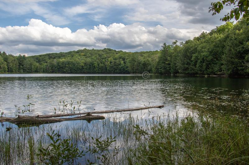 Summer morning at Peck Lake Algonquin Park royalty free stock images