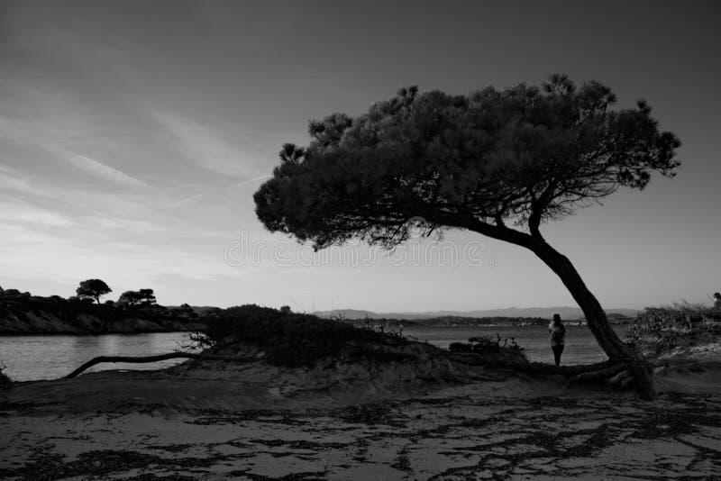 quietness стоковые фотографии rf