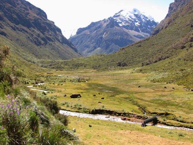 Quilcayhuanca wędrówka w Huascaran parku narodowym i dolina, Peru fotografia stock
