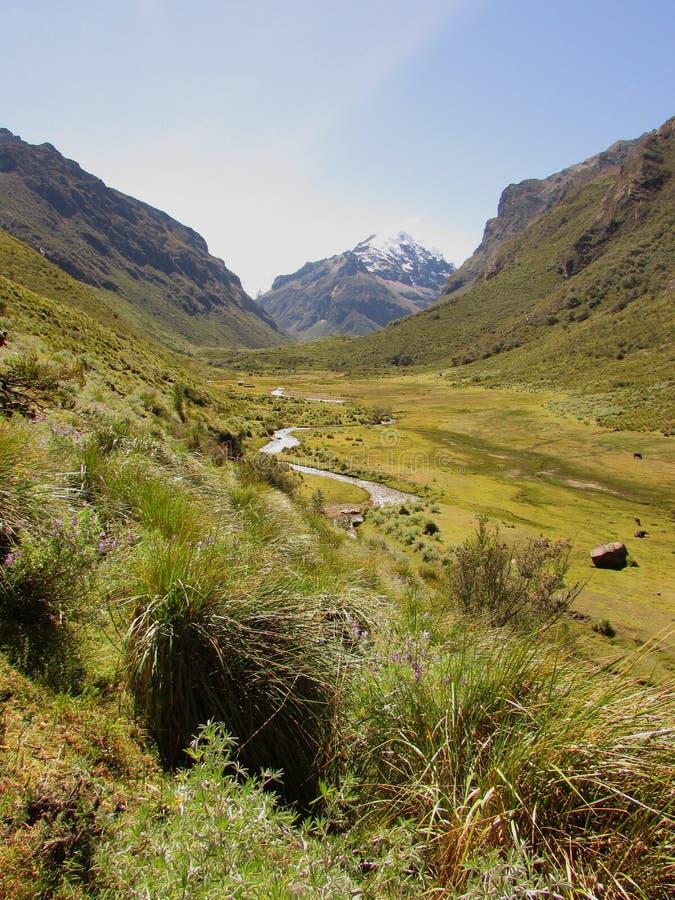 Quilcayhuanca wędrówka w Huascaran parku narodowym i dolina, Peru fotografia royalty free