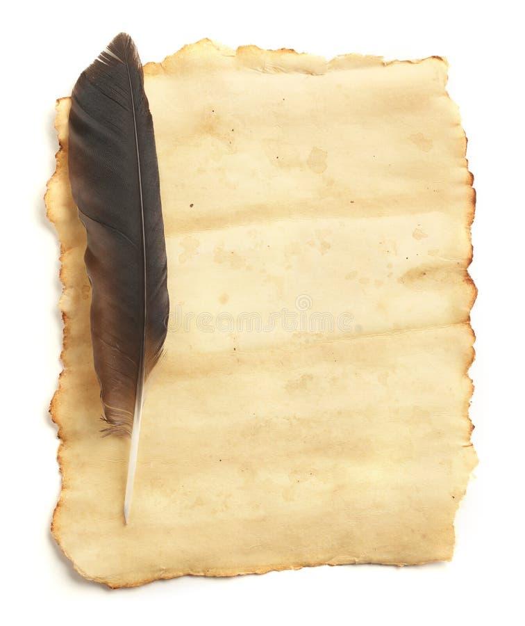 quill för blankt papper arkivfoton