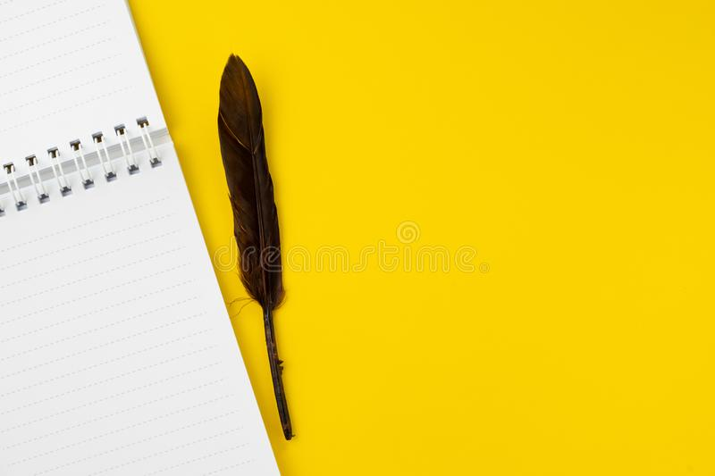 Quill or feather on clean white notebook open with copy space on solid yellow table background for presentation, writer or school stock photo