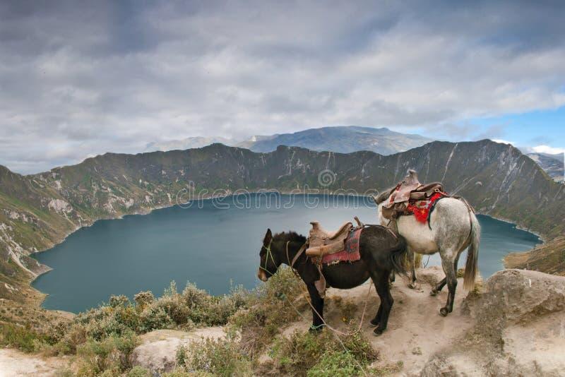 Quilotoa Kratersee lizenzfreies stockbild