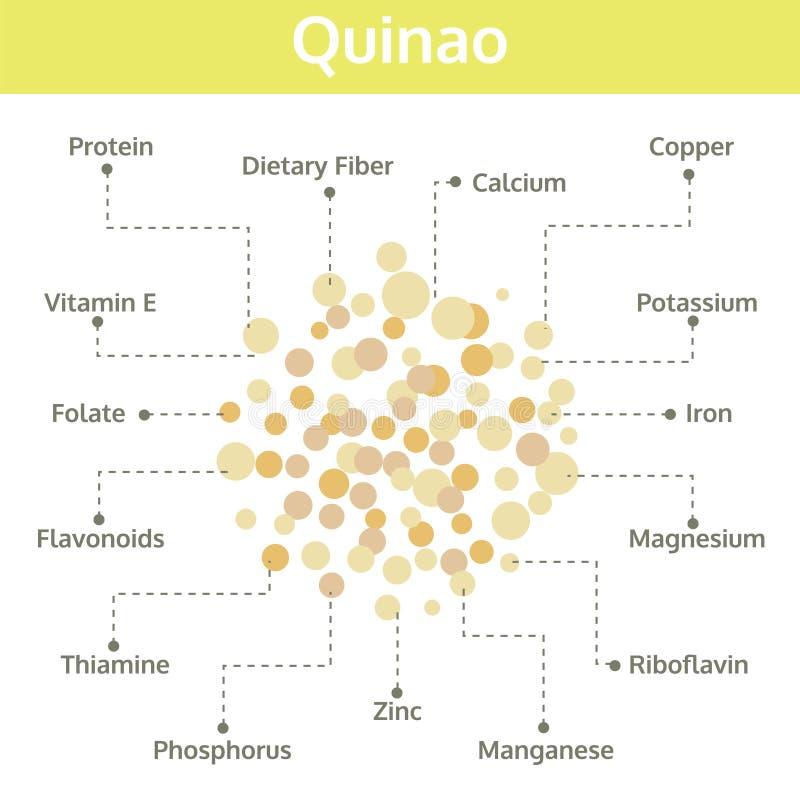 Quinao-Nährstoff von Tatsachen und von Nutzen für die Gesundheit, Informationsgraphik lizenzfreie abbildung