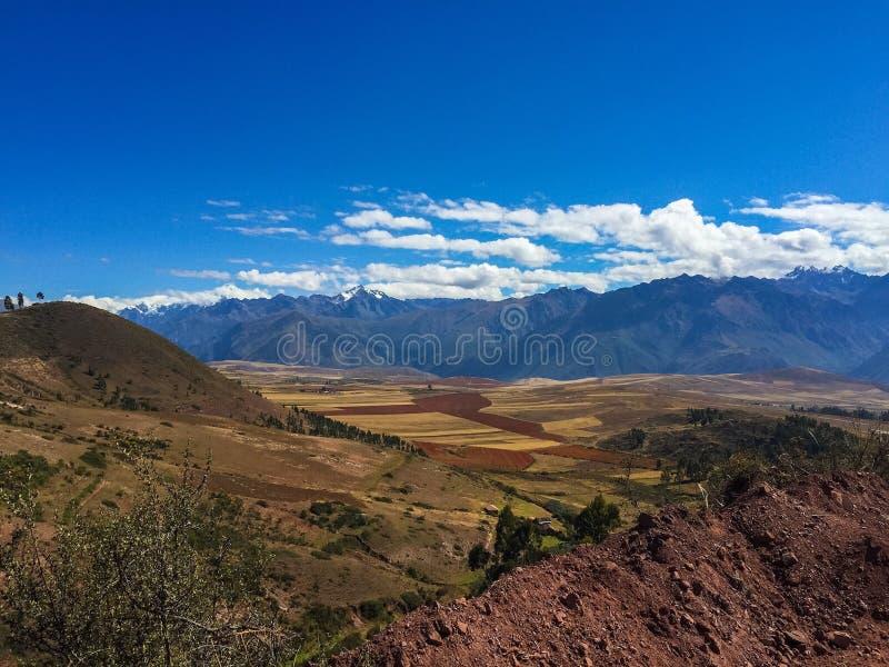 Quinoa καλλιεργεί κοντά σε Cusco στοκ φωτογραφία με δικαίωμα ελεύθερης χρήσης