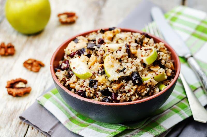Quinoa μελιτζάνας ξηρά σαλάτα των βακκίνιων μήλων στοκ εικόνες