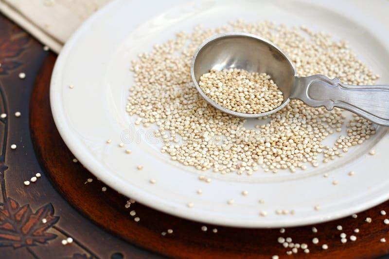 quinoa fotografering för bildbyråer