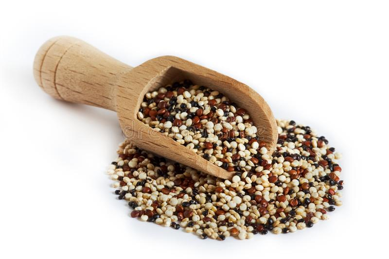Quinoa cruda mista immagine stock