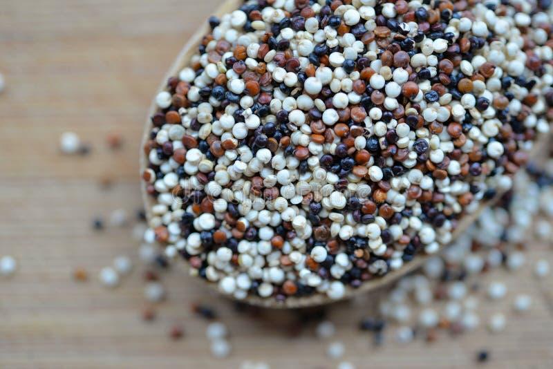 Quinoa e Chia imagens de stock