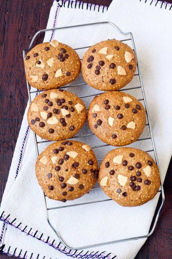 Quinoa koekjes royalty-vrije stock foto's