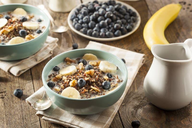 Quinoa organica della prima colazione con i dadi fotografie stock libere da diritti