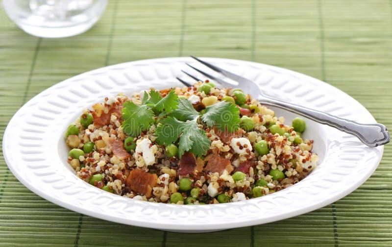 Quinoa salade royalty-vrije stock foto