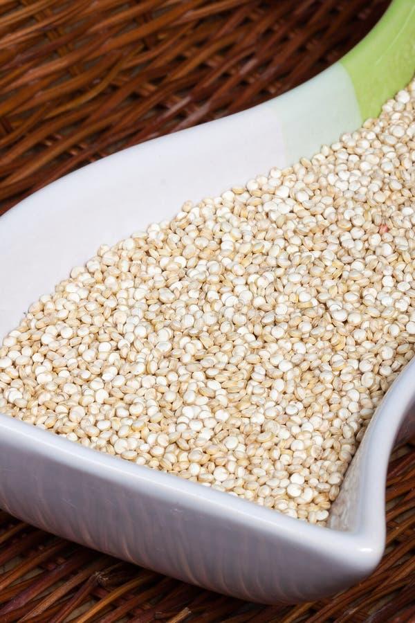 Quinoa tło obraz royalty free
