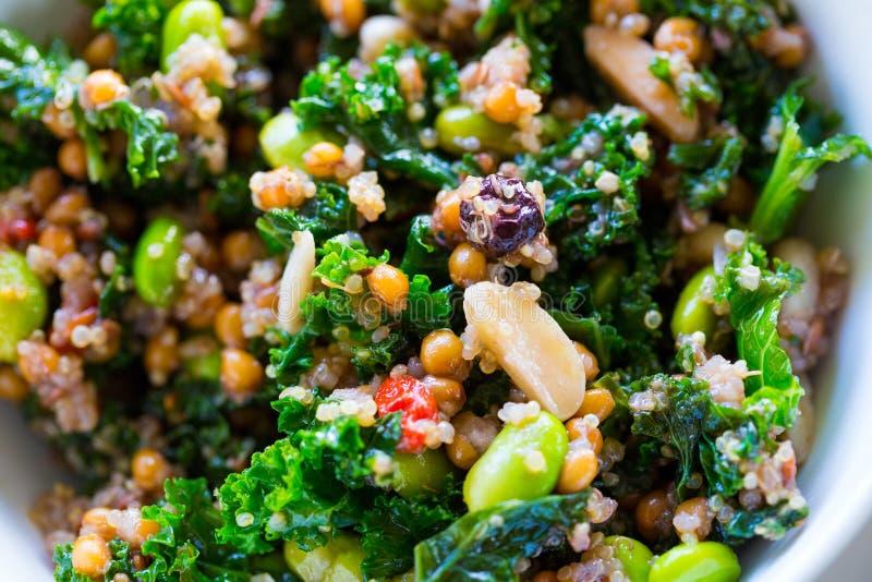 Quinoa van het Paleodieet Boerenkoolsalade stock afbeeldingen