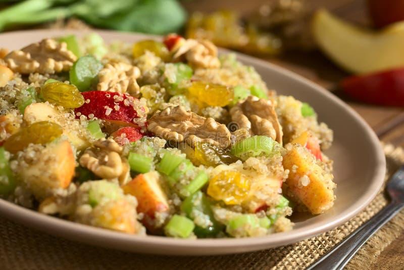 Quinoa Waldorf Salad royalty free stock photo