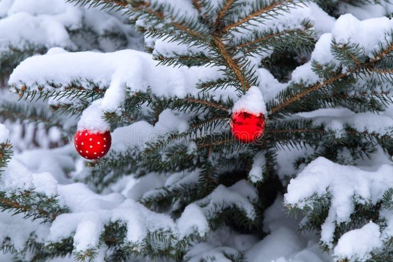 Quinquilharias vermelhas do Natal que penduram no pinheiro fotografia de stock royalty free