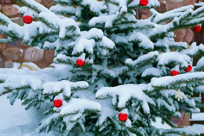 Quinquilharias vermelhas do Natal que penduram no pinheiro fotografia de stock