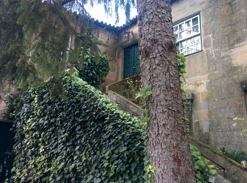 Quinta 3 fotografia royalty free