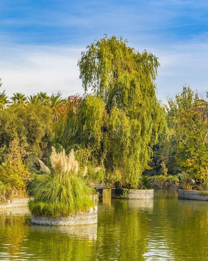 Quinta normalna park, Santiago de Chile obraz stock
