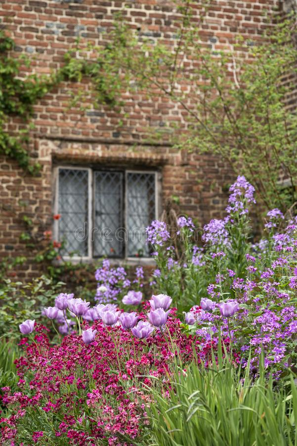 Quintessential vibrant English country garden scene landscape wi. Quintessential English country garden scene landscape with fresh Spring flowers in cottage stock image