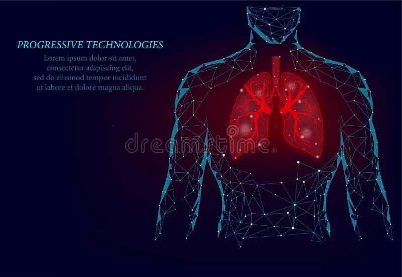 ?quipez le mod?le sain de m?decine des poumons 3d de silhouette bas poly La triangle est reliée par des points d'illumination Les illustration libre de droits