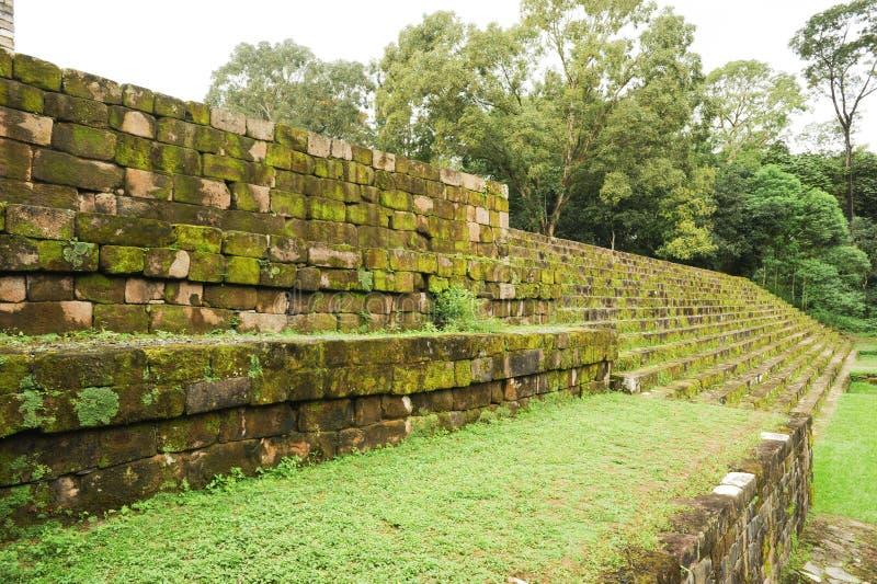 Quirigua玛雅考古学站点  免版税库存图片