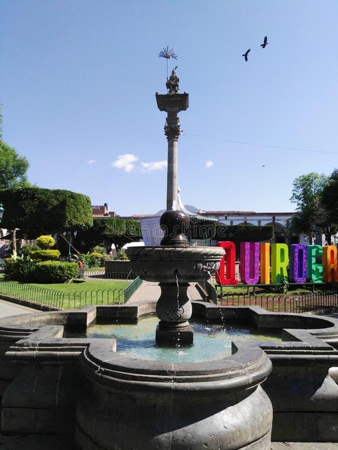 Quiroga lizenzfreie stockfotografie
